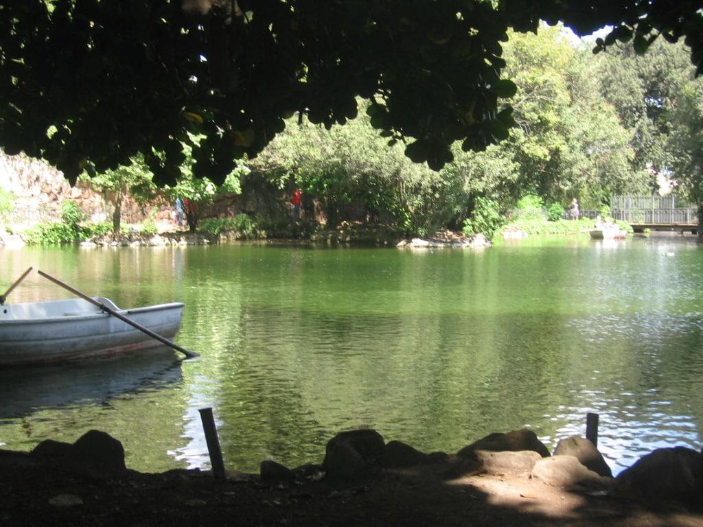 Paseo por villa Borghese con almuerzo - Tour especial 6/5