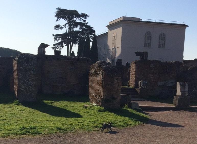 palatino roma
