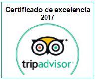 certificado excelencia Guía En Roma