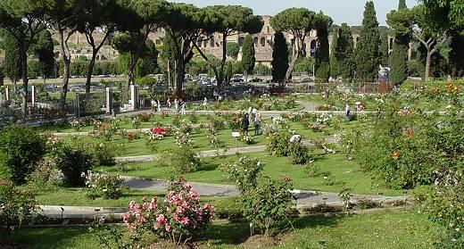 rosaleda municipal de Roma