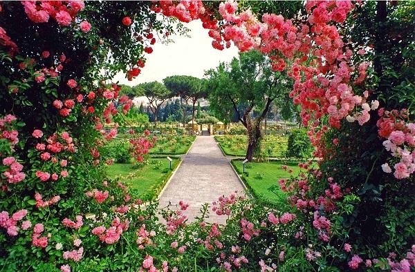 El clima en Roma primavera rosaleda