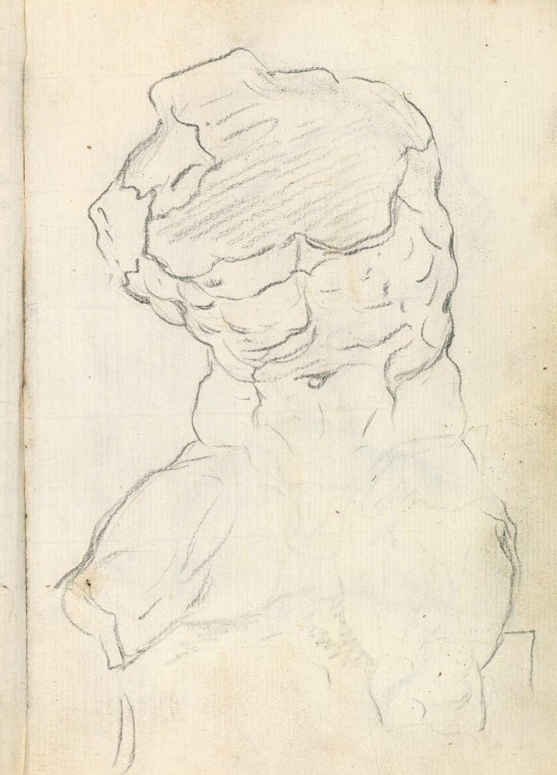 torso belvedere dibujo goya