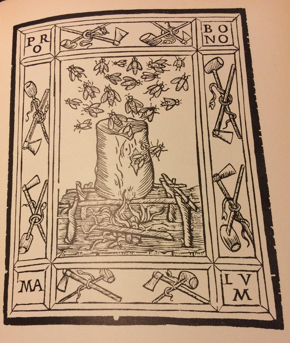 pro bono ariosto orlando furioso edicion 1516