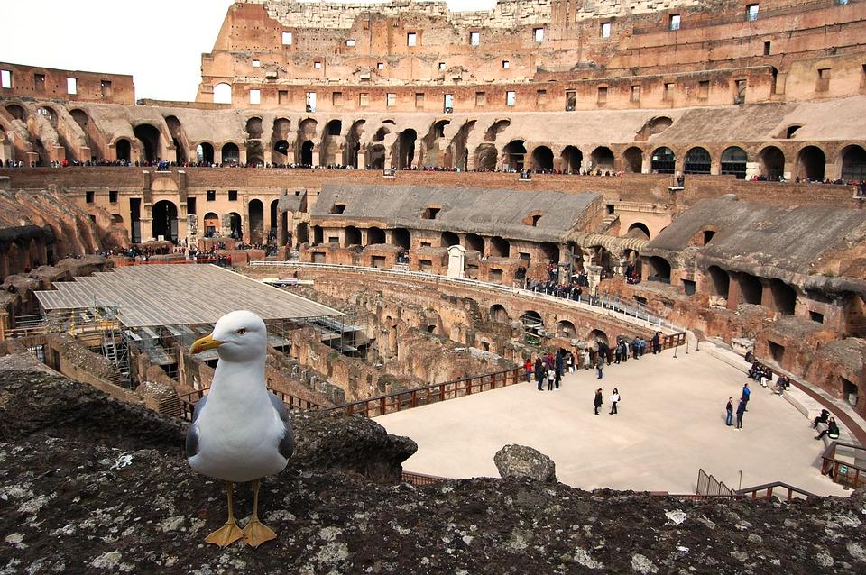 Visita Coliseo Arena, Foro y Palatino
