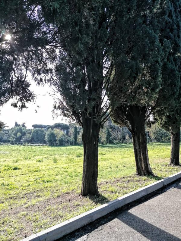 Lugares para correr en Roma