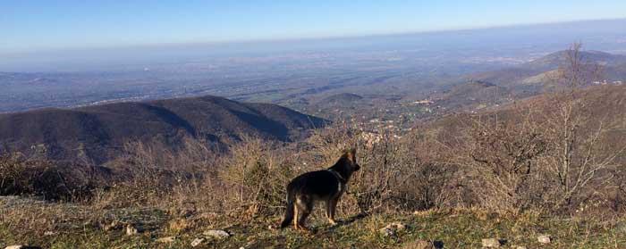 montanas cerca roma vistas