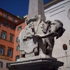 elefante santa maria sopraminerva